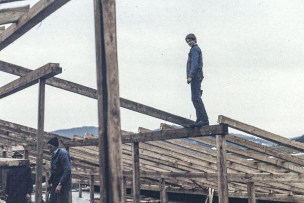 Holzbau Buchner 1979 alt